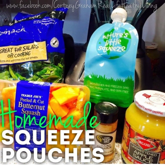 Healthier Homemade Kids Squeeze Pouches...only 4 ingredients!